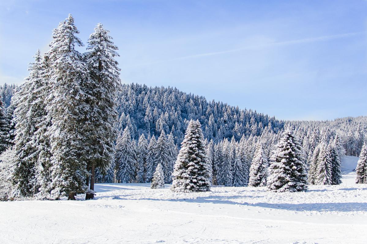 Skigebiete im südlichen Schwarzwald